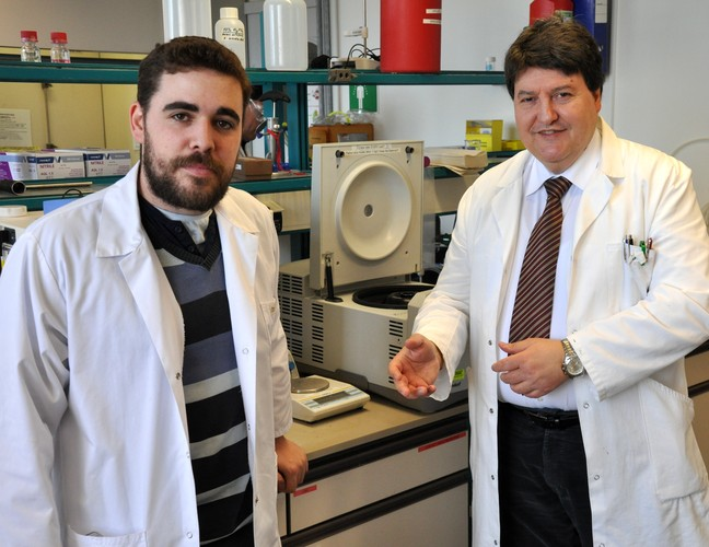 "Towards entry ""Eugeni Cañas (ITC, Castellon, Spain) completes fellowship at Institute of Biomaterials"""