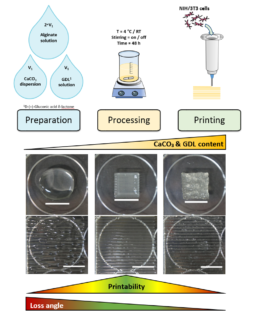 "Towards entry ""Our new new paper on bioprinting of alginate published in ""Biofabrication"""""