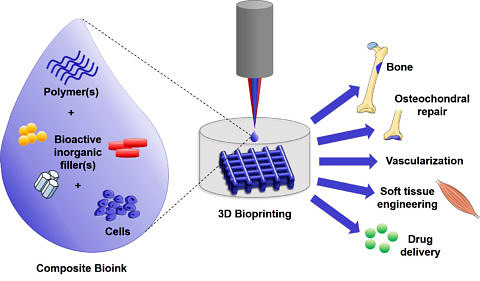 "Towards entry ""Our review paper on composite bioinks for bioprinting published in Acta Biomaterialia"""
